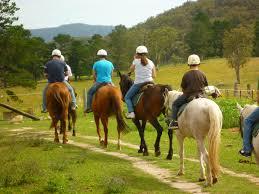 konjeništvo