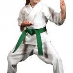Dejavnosti po šoli:karate za otroke